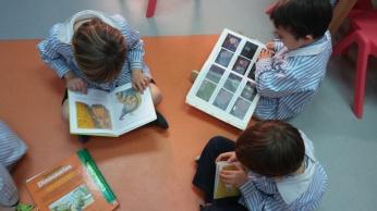 llegim contes
