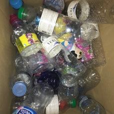 ampolles contenidor
